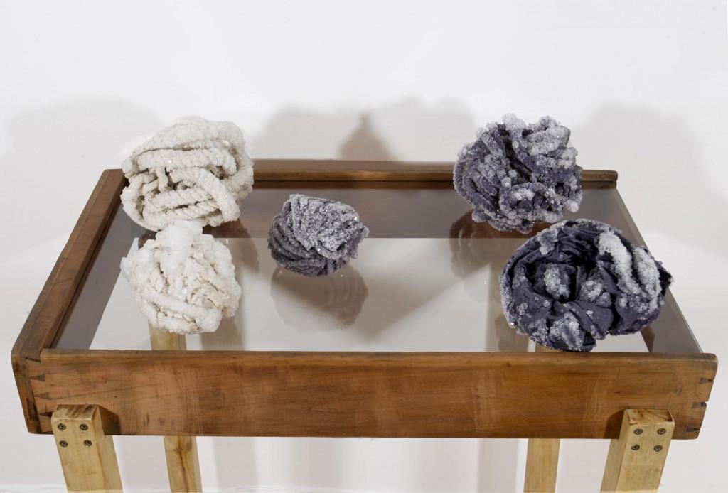 Diana Drake - Nudos- instalación conjunto de sogas - cristalización de alumbre- medidas variables- 2013