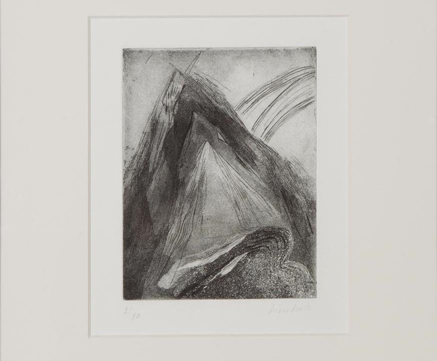 Diana Drake- STI -grabado sobre papel- 42x32 cm- series variables- 2013