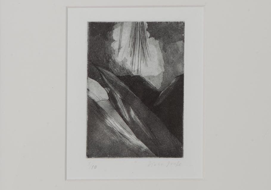 Diana Drake-STV- grabado sobre papel- 42x32 cm- series variables- 2013